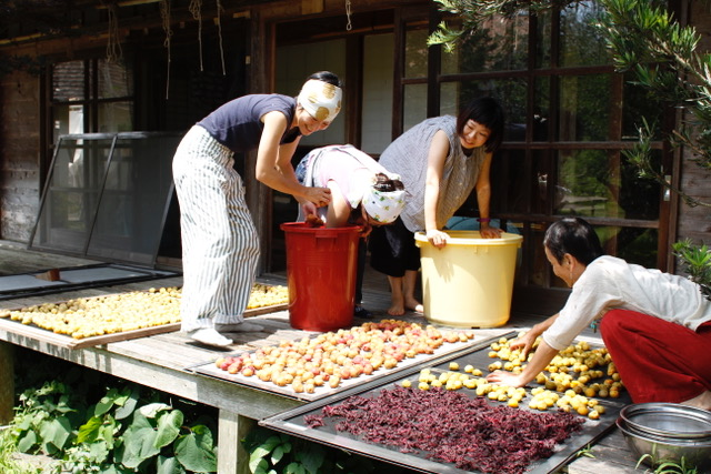Drying fruits and preserving food.