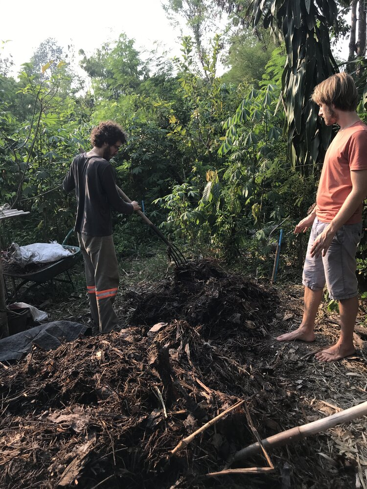 permaculture thermophylic compost