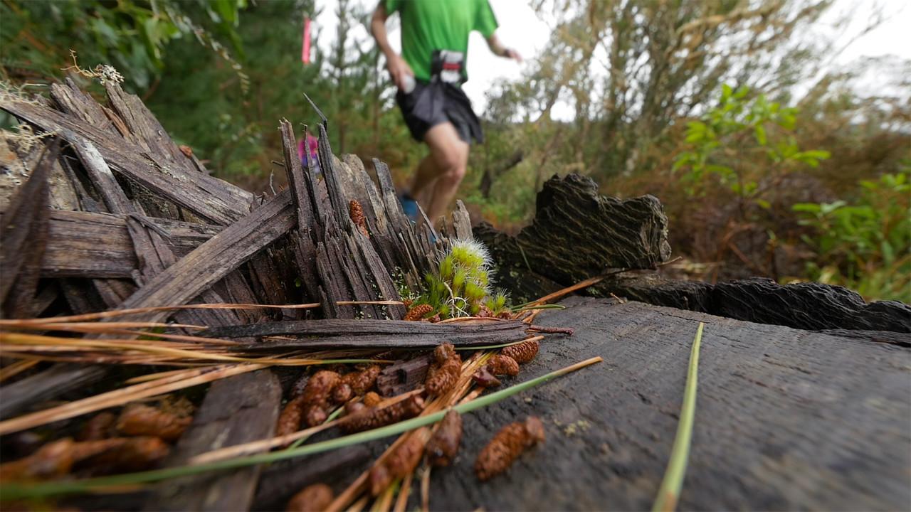 Event Video Rotorua Tarawera Trail.jpg