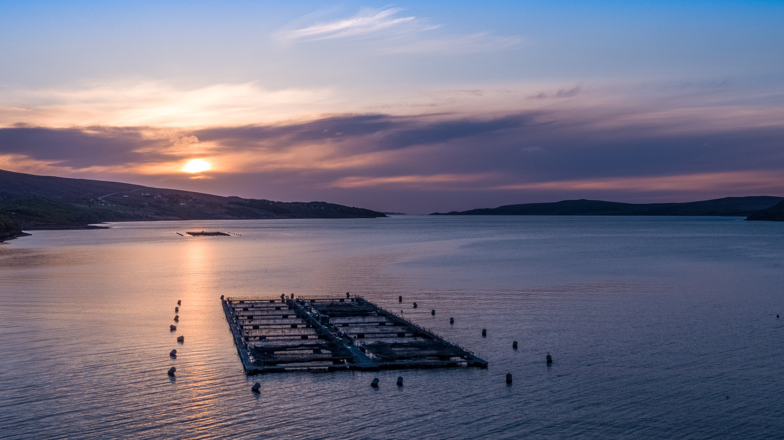 Ardessie - Wester Ross Salmon.  All Natural Salmon Farm