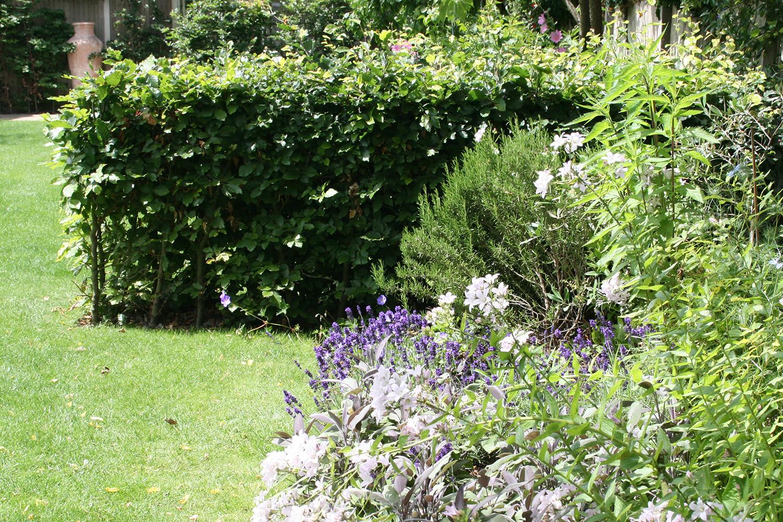 joanna_archer_garden_design_water_feature_garden.jpeg