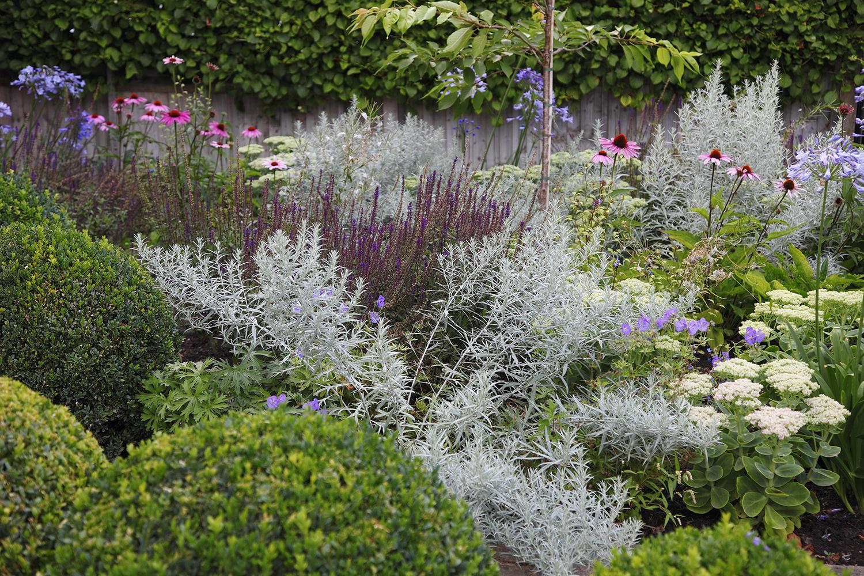 joanna_archer_garden_design_front_garden4.jpg