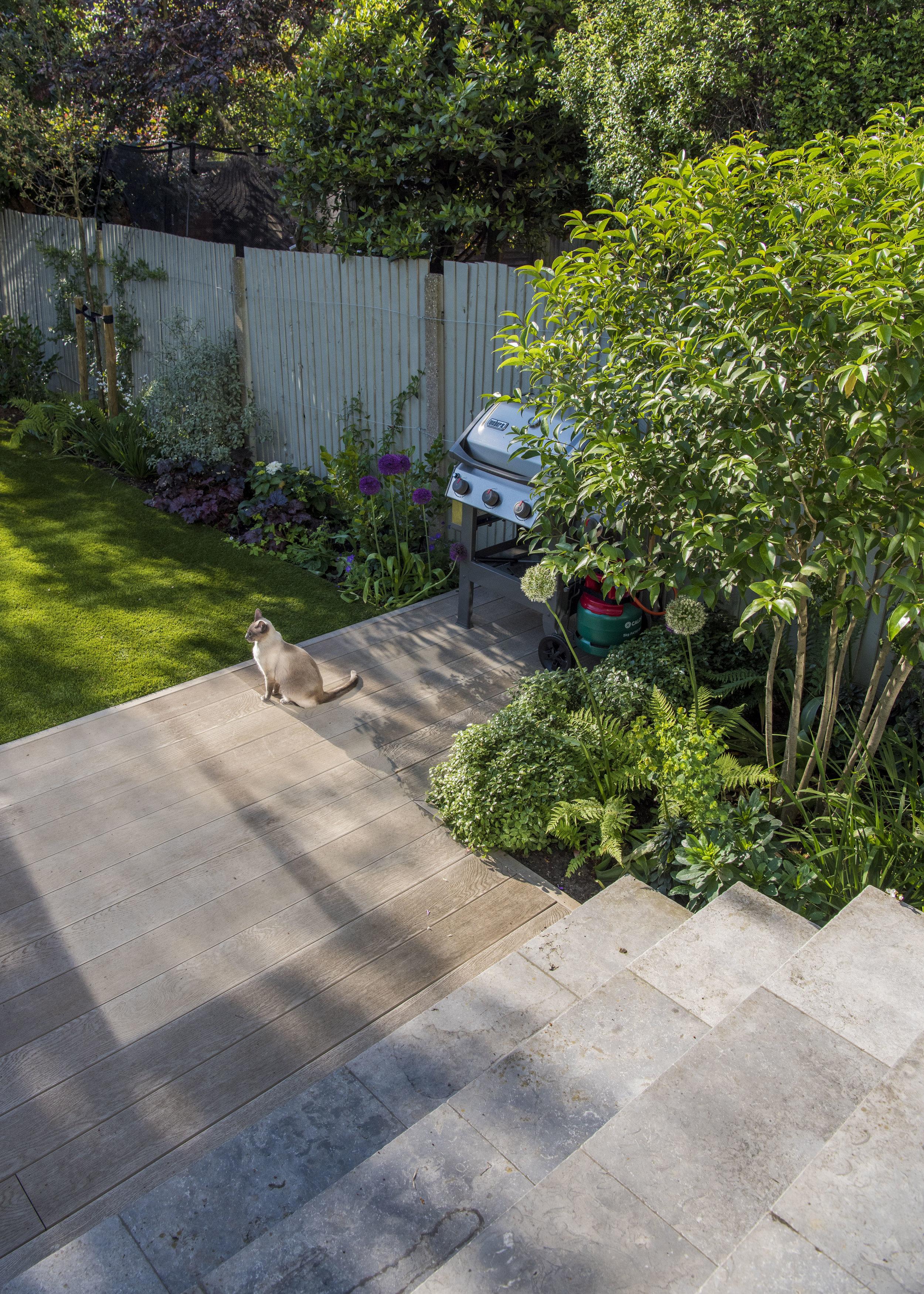 Joanna_Archer_Garden_Design_sun_terrace4.jpg