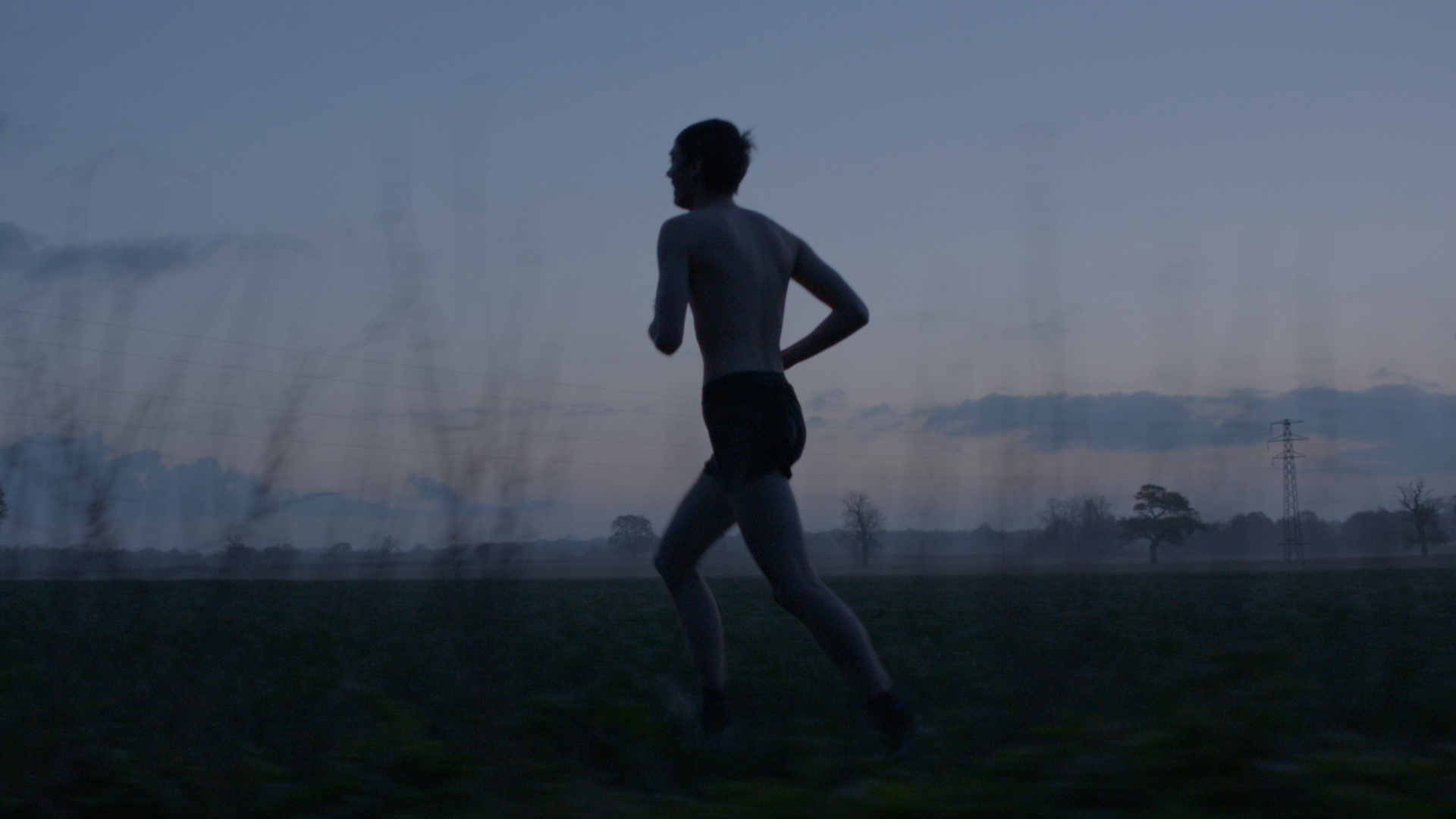 bailey tom bailey_circadian rhythms _ dawn run 2.jpg