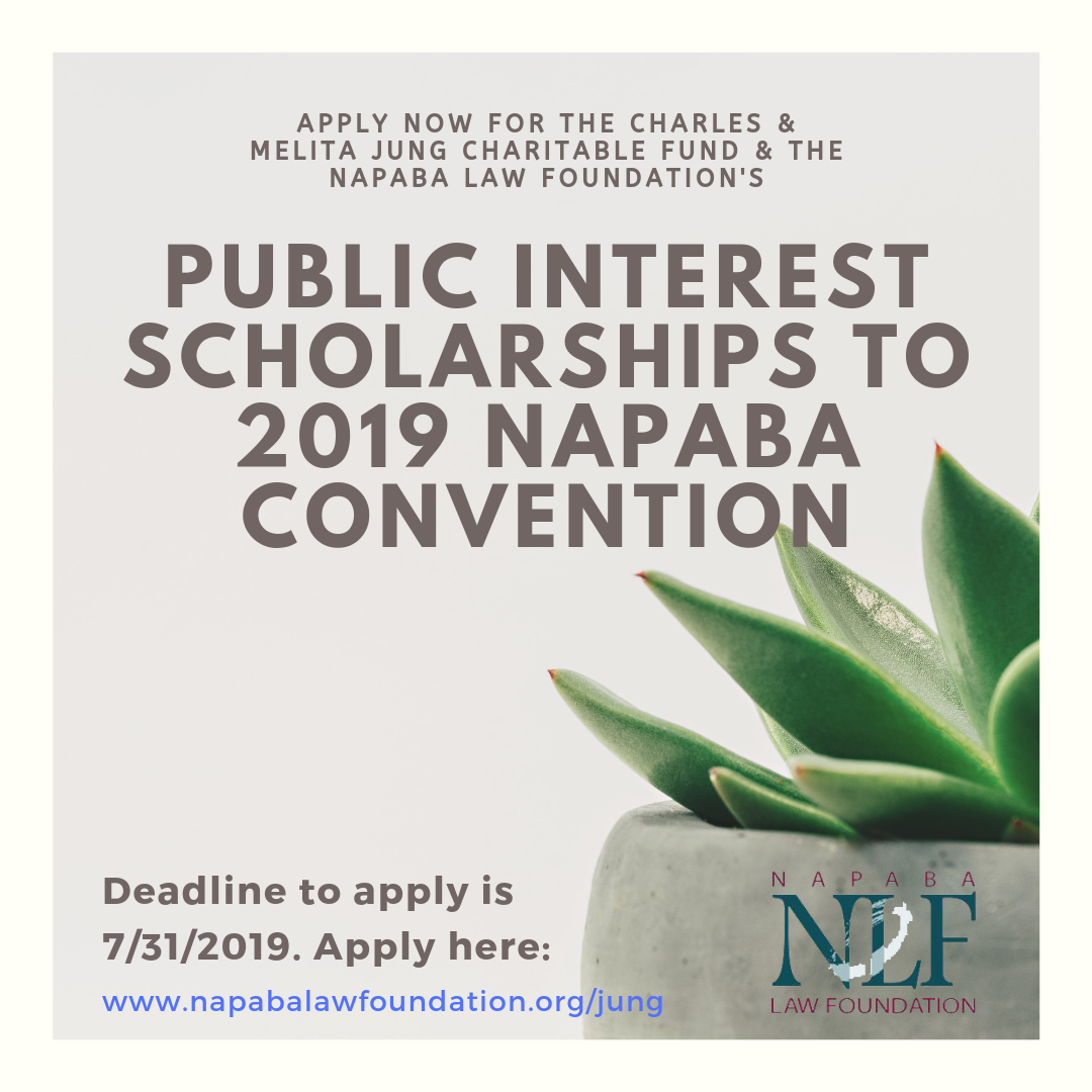 Public Interest Scholarships to 2019 NAPABA Convention (1).png