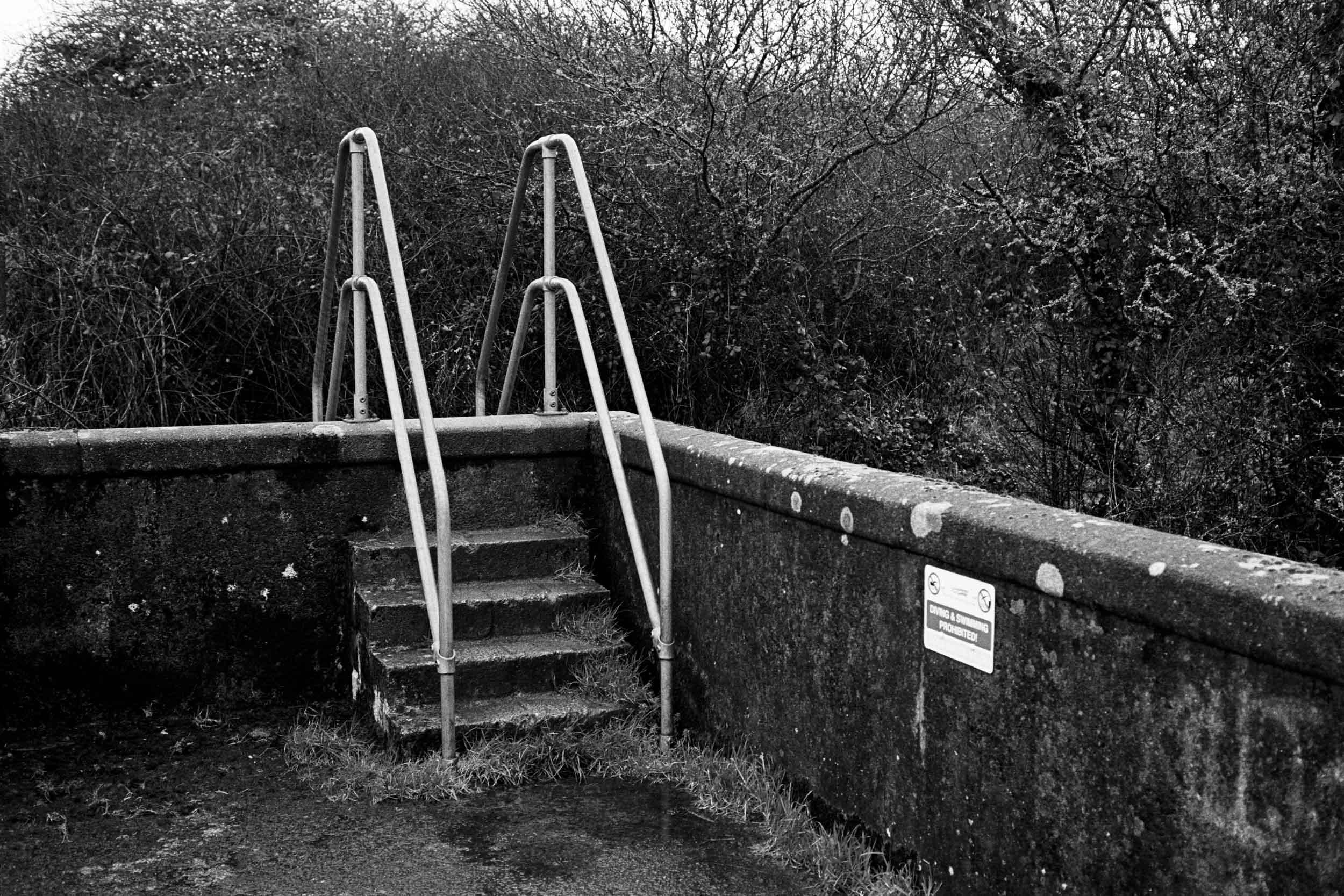 Overgrown steps