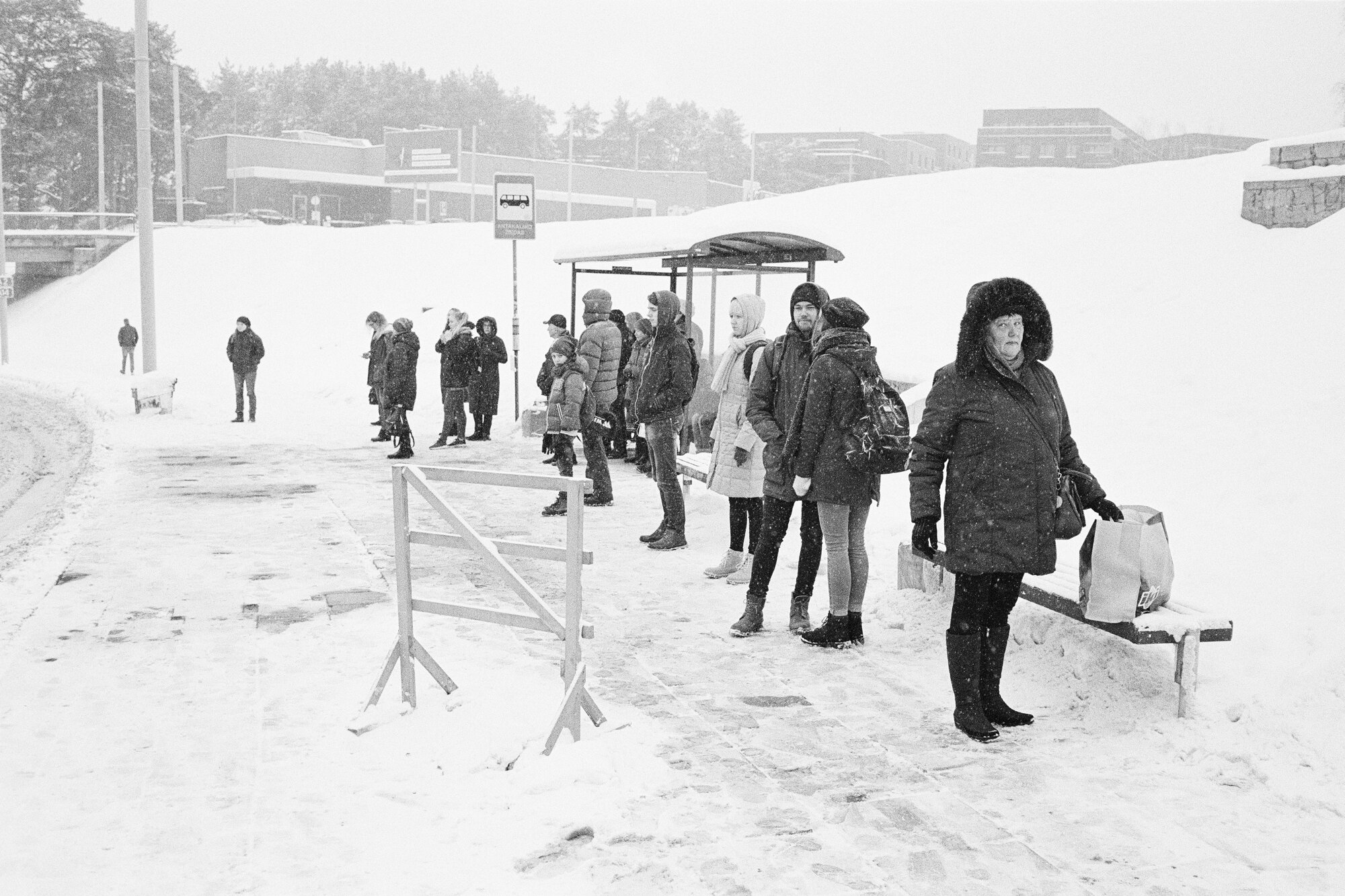 Ignas_Winter-6.jpg