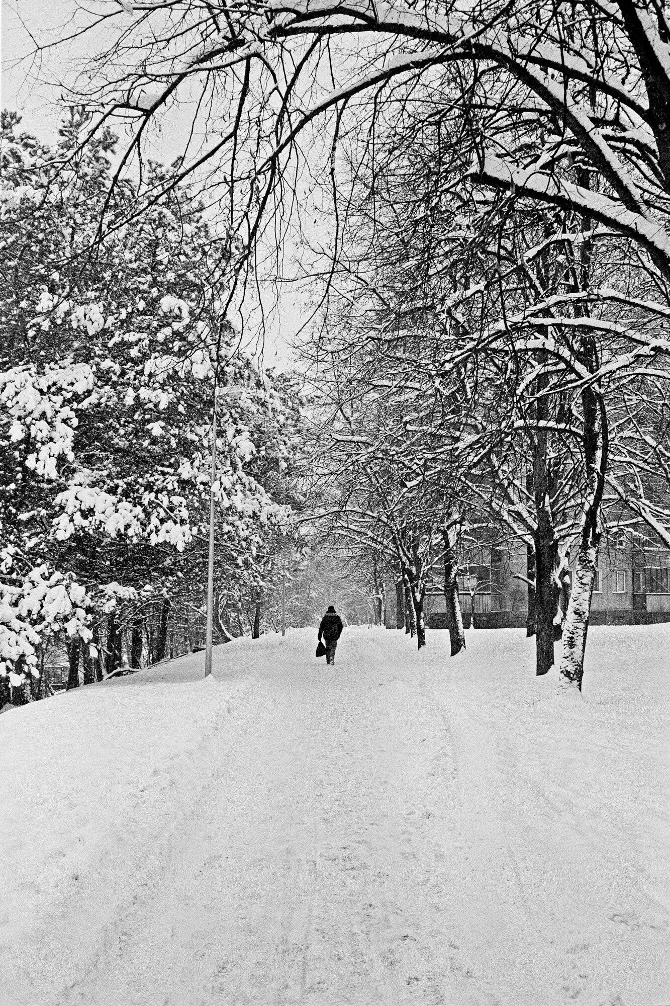 Ignas_Winter-16.jpg