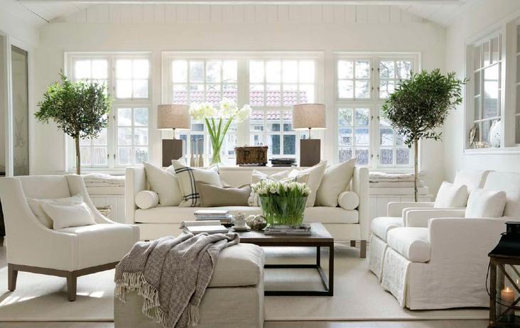 plants brighten room