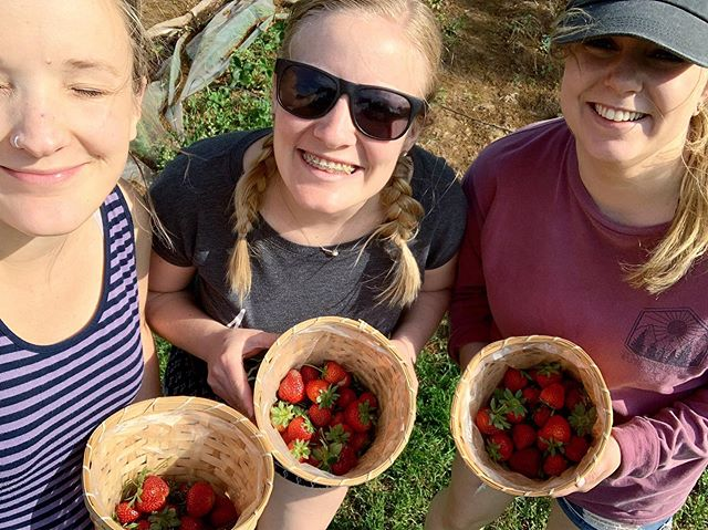 This is summer. Squinty (or closed) eyes, strawberry picking, laughing with my neighbors, my teammates, my friends. I'm L O V I N G it.
