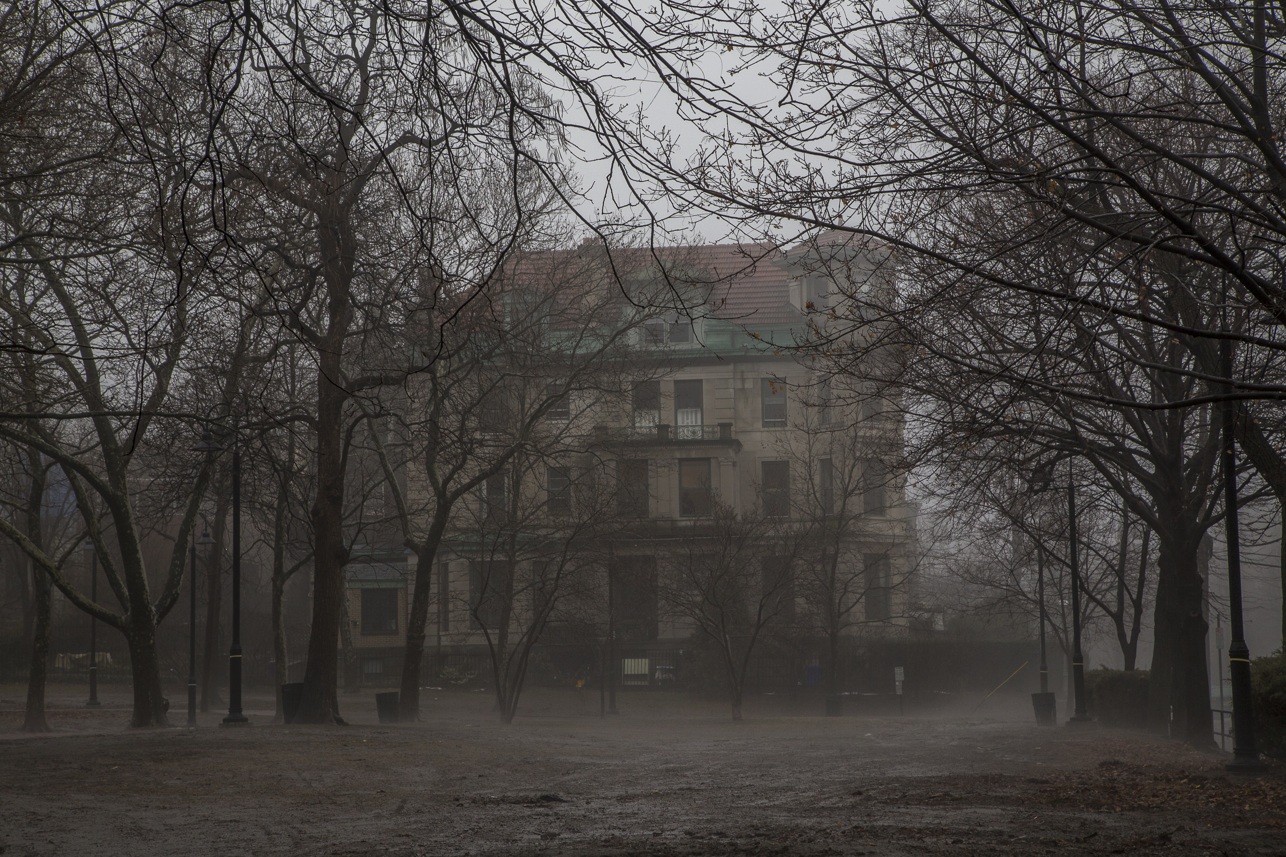 Fog-042.jpg