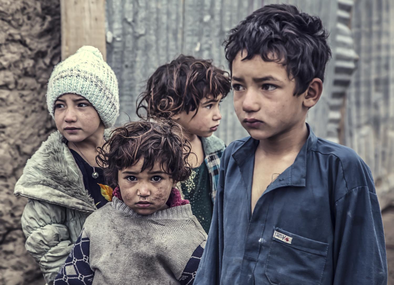 afghan-25692017.jpg