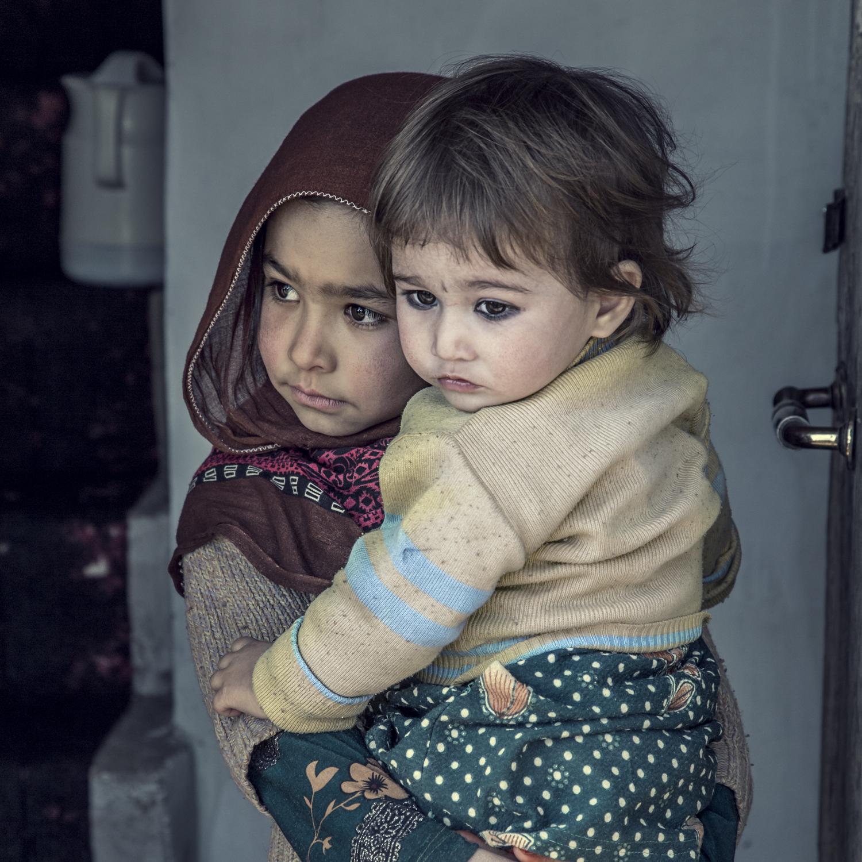 afghan-25722017.jpg