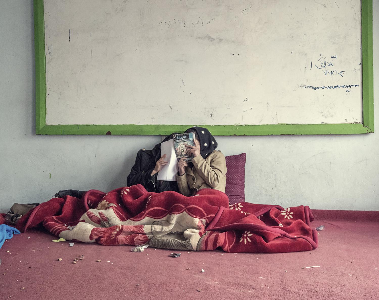 afghan-49002017.jpg