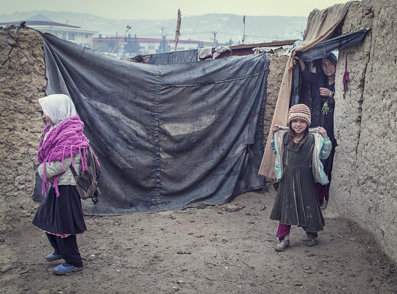 afghan-22672017.jpg