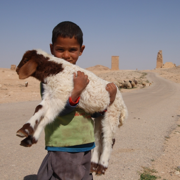 By Ed Brambley from Cambridge, UK (Young Shepherd) [CC BY-SA 2.0 (http://creativecommons.org/licenses/by-sa/2.0)], via Wikimedia Commons