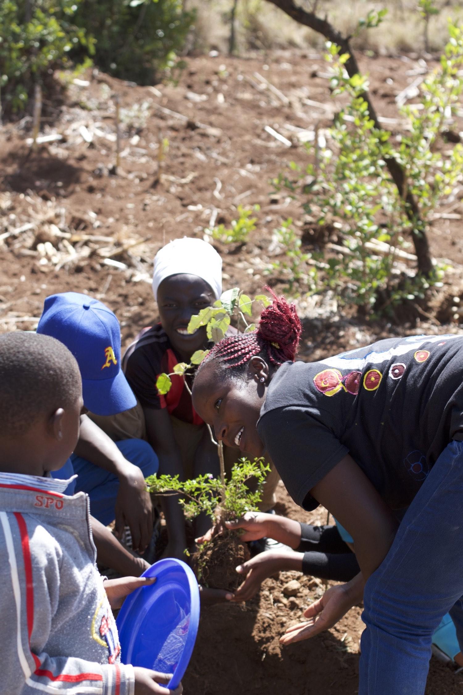 Planting Trees @ Eco-Village