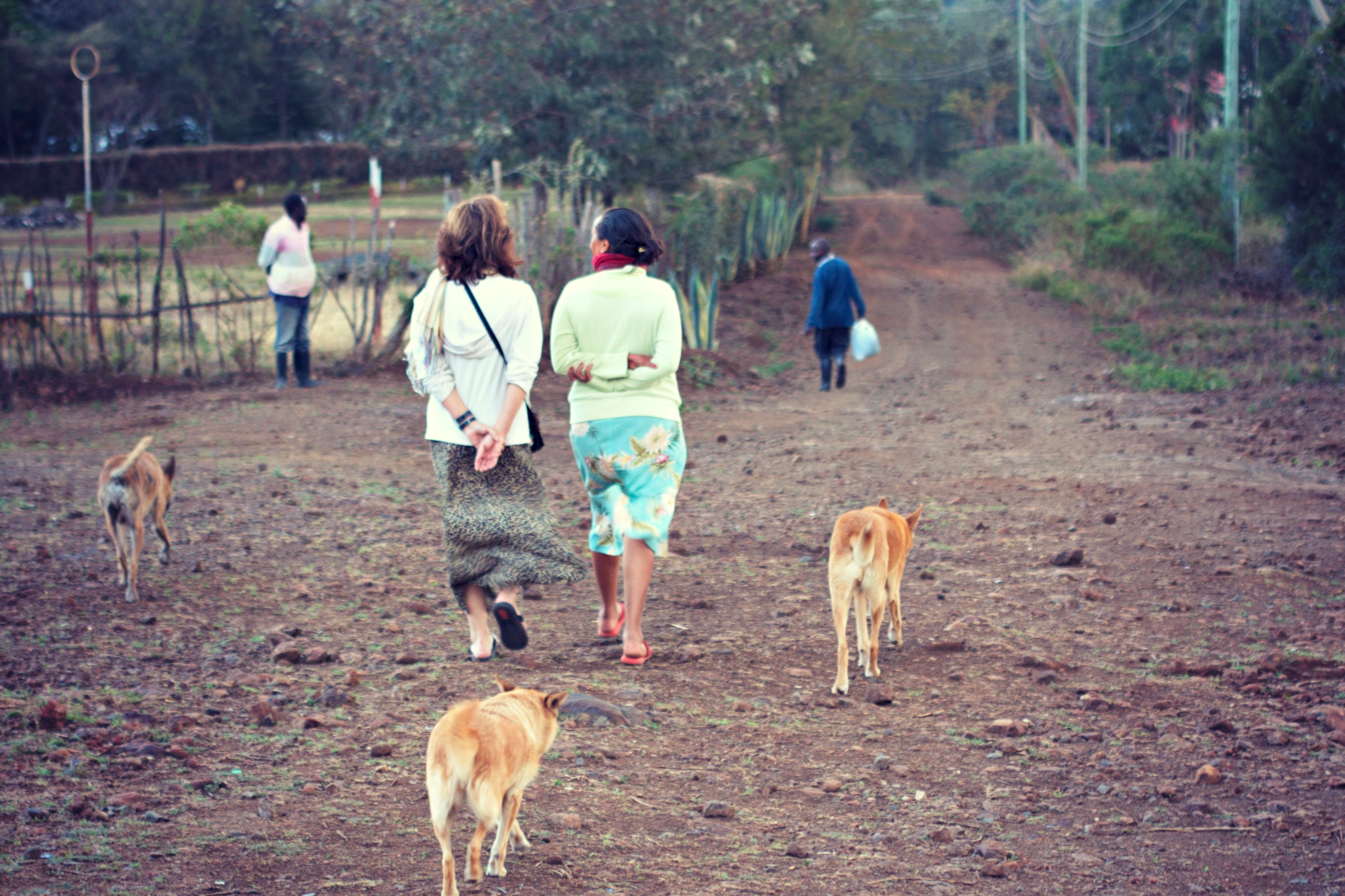 WalkTheDogs.png