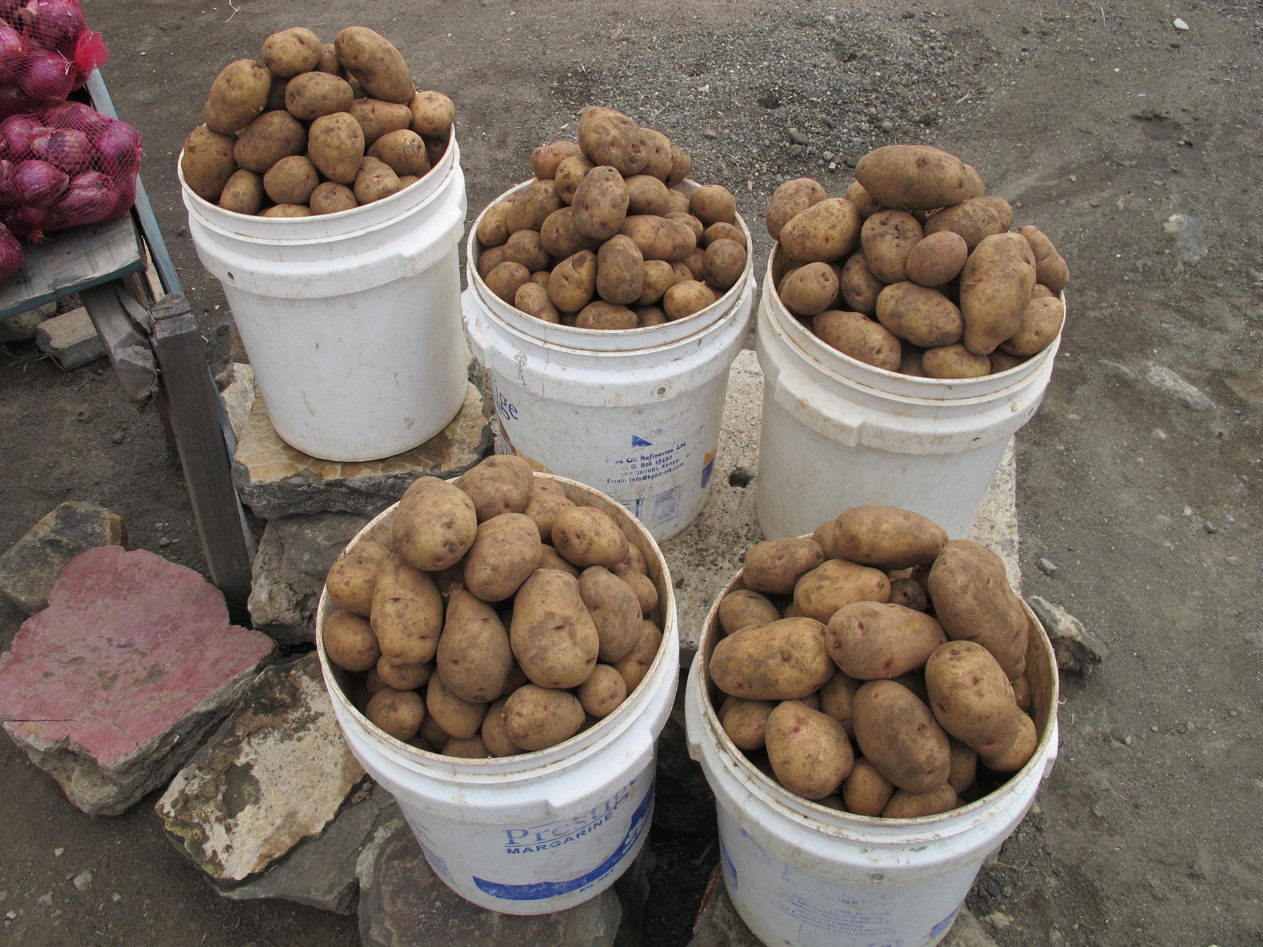potatobuckets.JPG