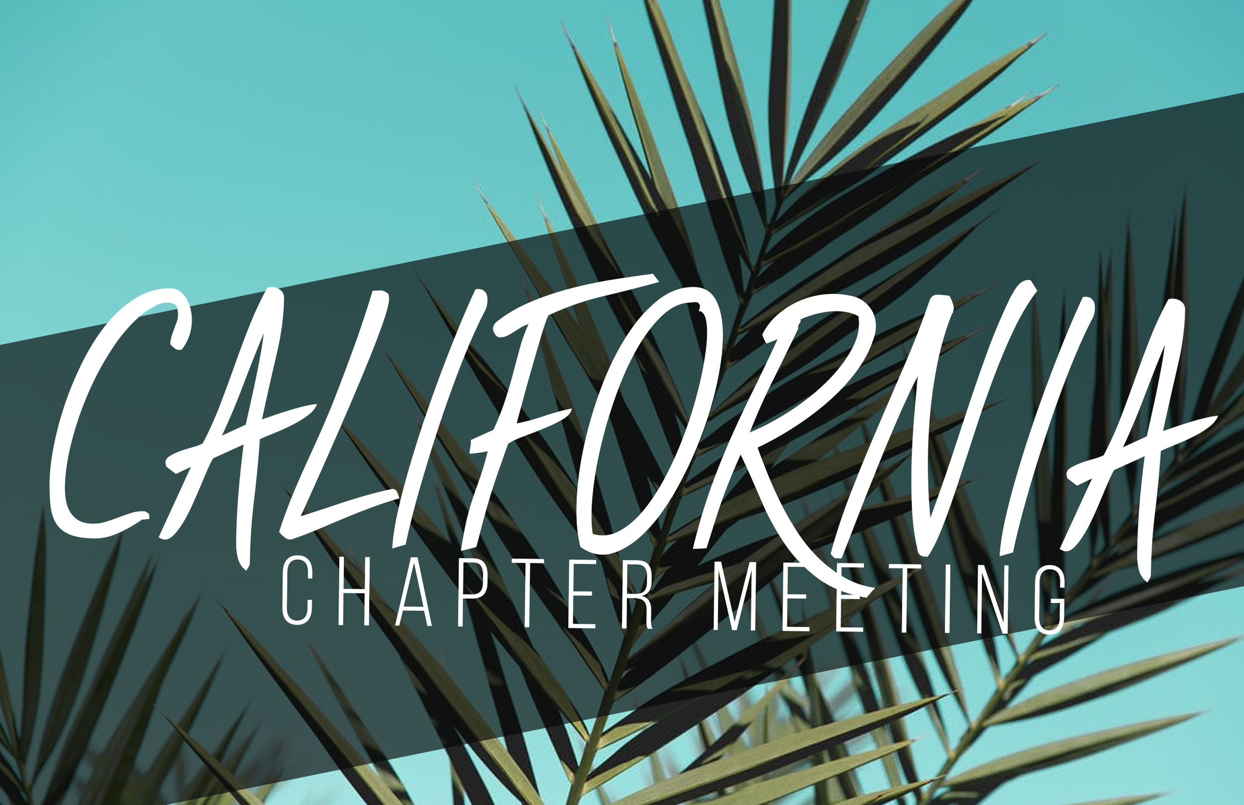 California Chapter Meeting - Website - Alumni Events.jpg