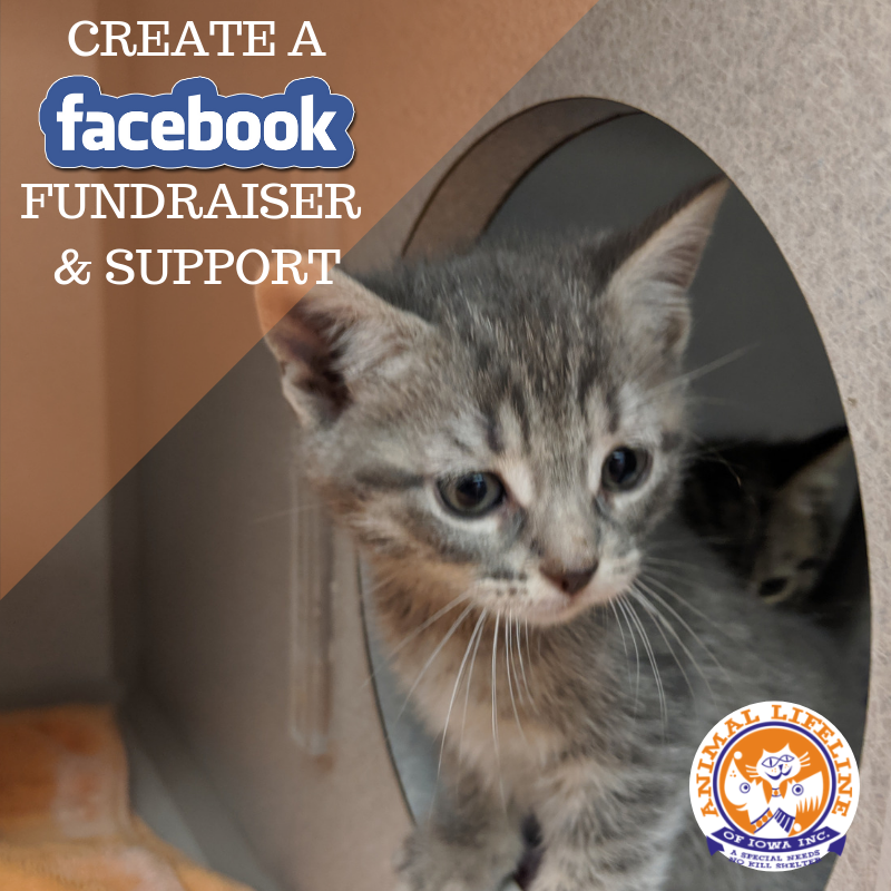 CREATE A FACEBOOK FUNDRAISER.png