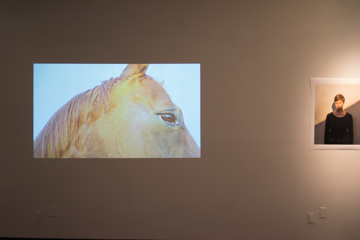 Installation view of video piece  Sonora