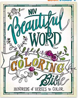 NIV Word Coloring Bible