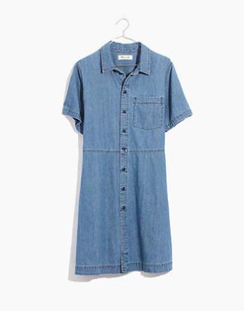 jean dress madewell
