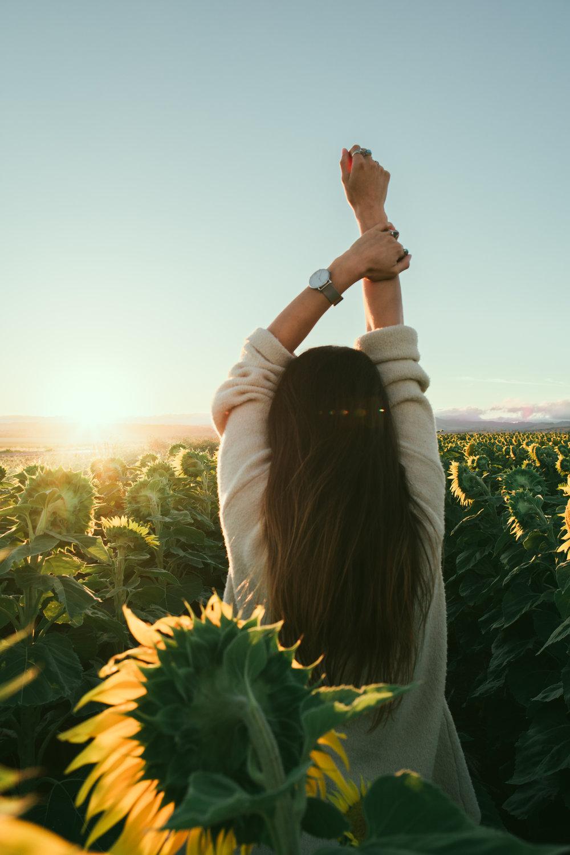 Erica Sunflowers.jpg