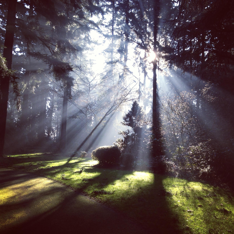 spiritual awakening (2).jpg