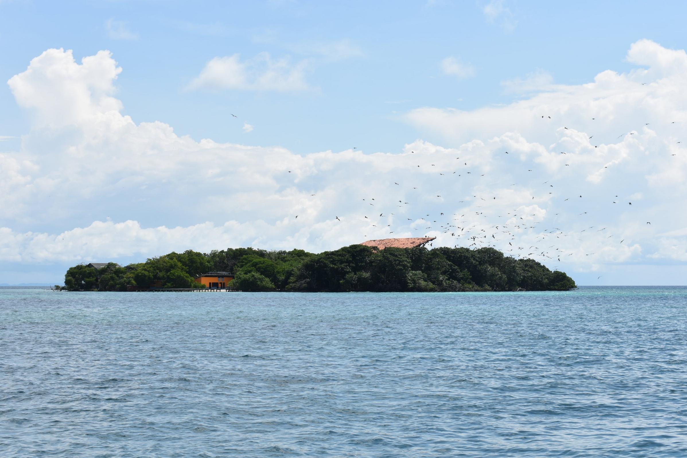 Caminho do Oceanário muitas ilhotas com aves