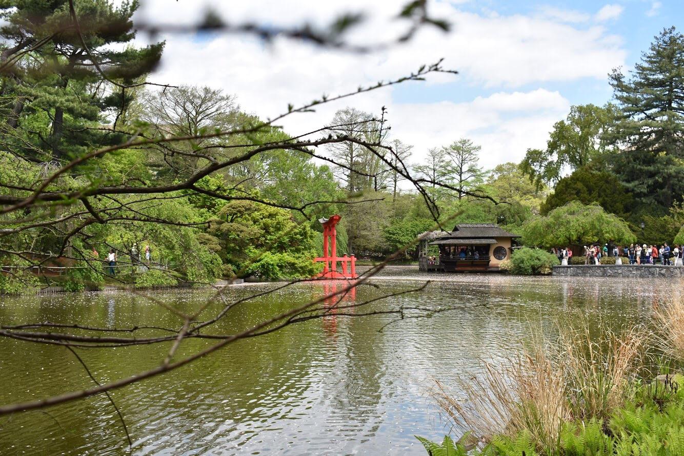 O Jardim Japonês, foi um presente do governo do Japão e reproduz a geografia do país.