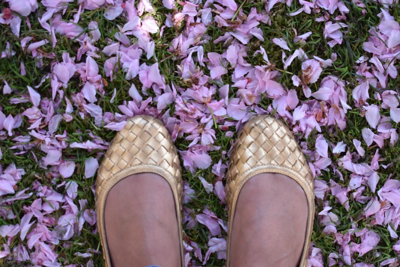 No chão, se forma um tapete Rosa com as flores que caem! Uma beleza linda de bonita!