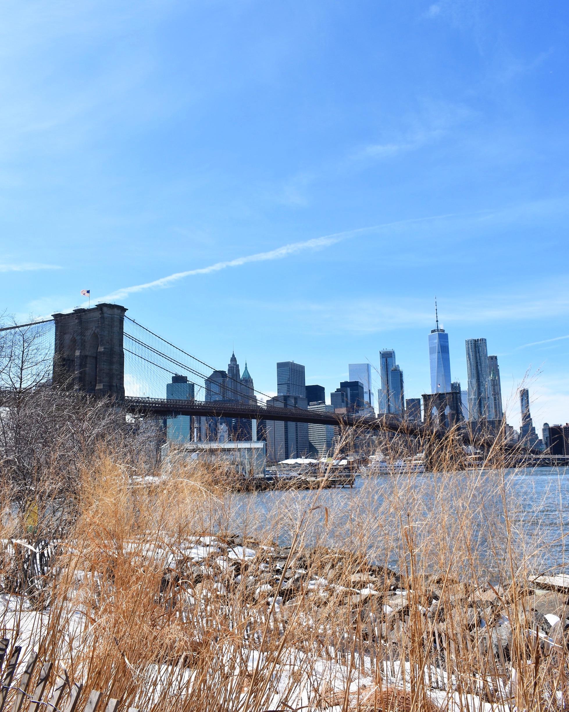 Brooklyn Bridge Park, além de um lugar gostoso, tem vista para a Skyline de Manhattan