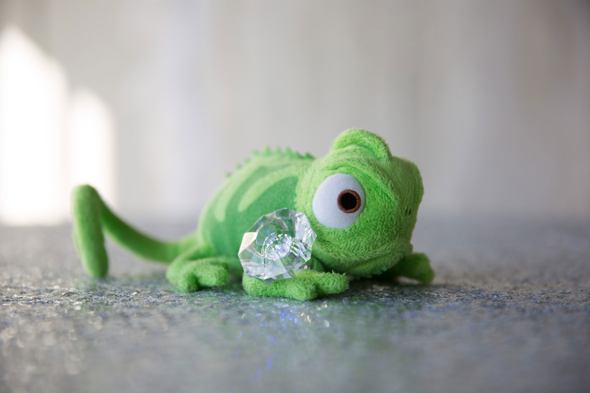 Pascal with his ring