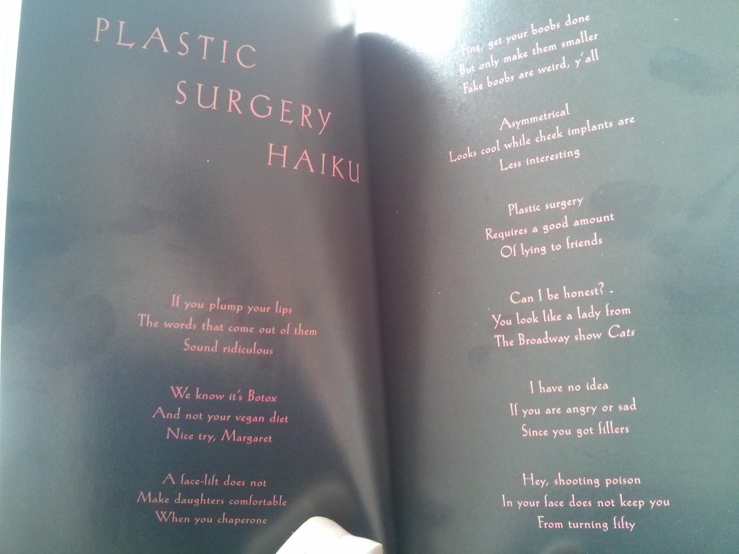 Plastic Surgery Haiko