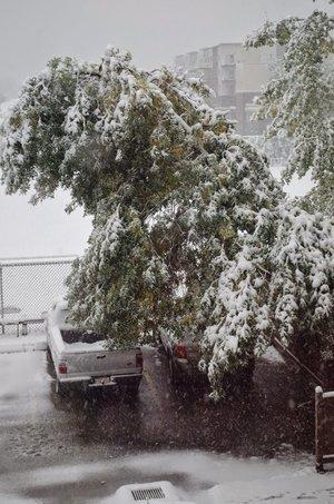Alberta Weather