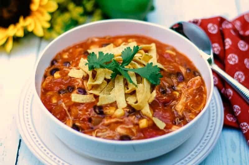 Easy-Cheesy-Chicken-Enchilada-Soup_8155-w.jpg