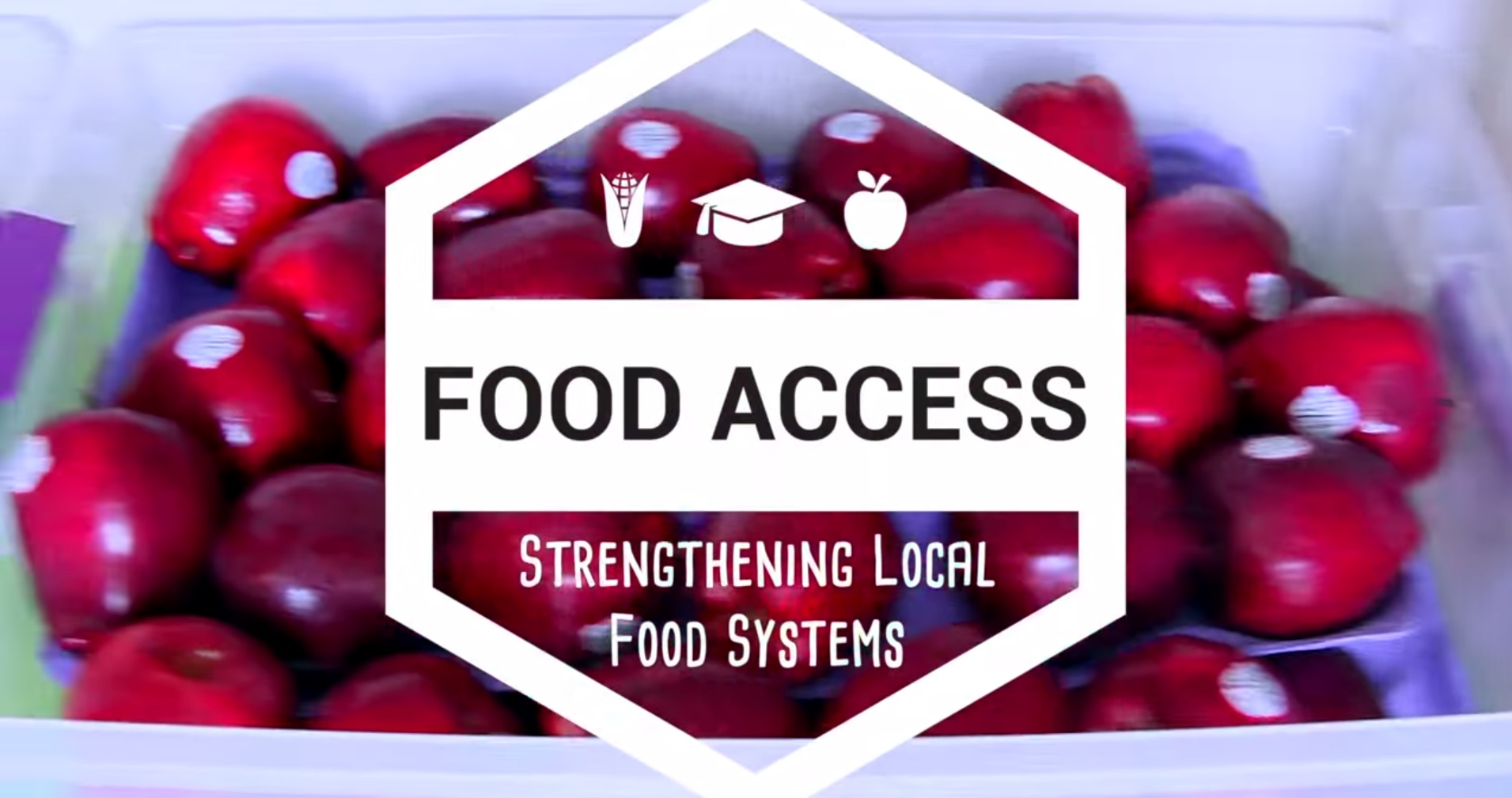 CDCs strengthen local food systems, which improve access to healthy foods and benefits the community, its economy, and the environment.