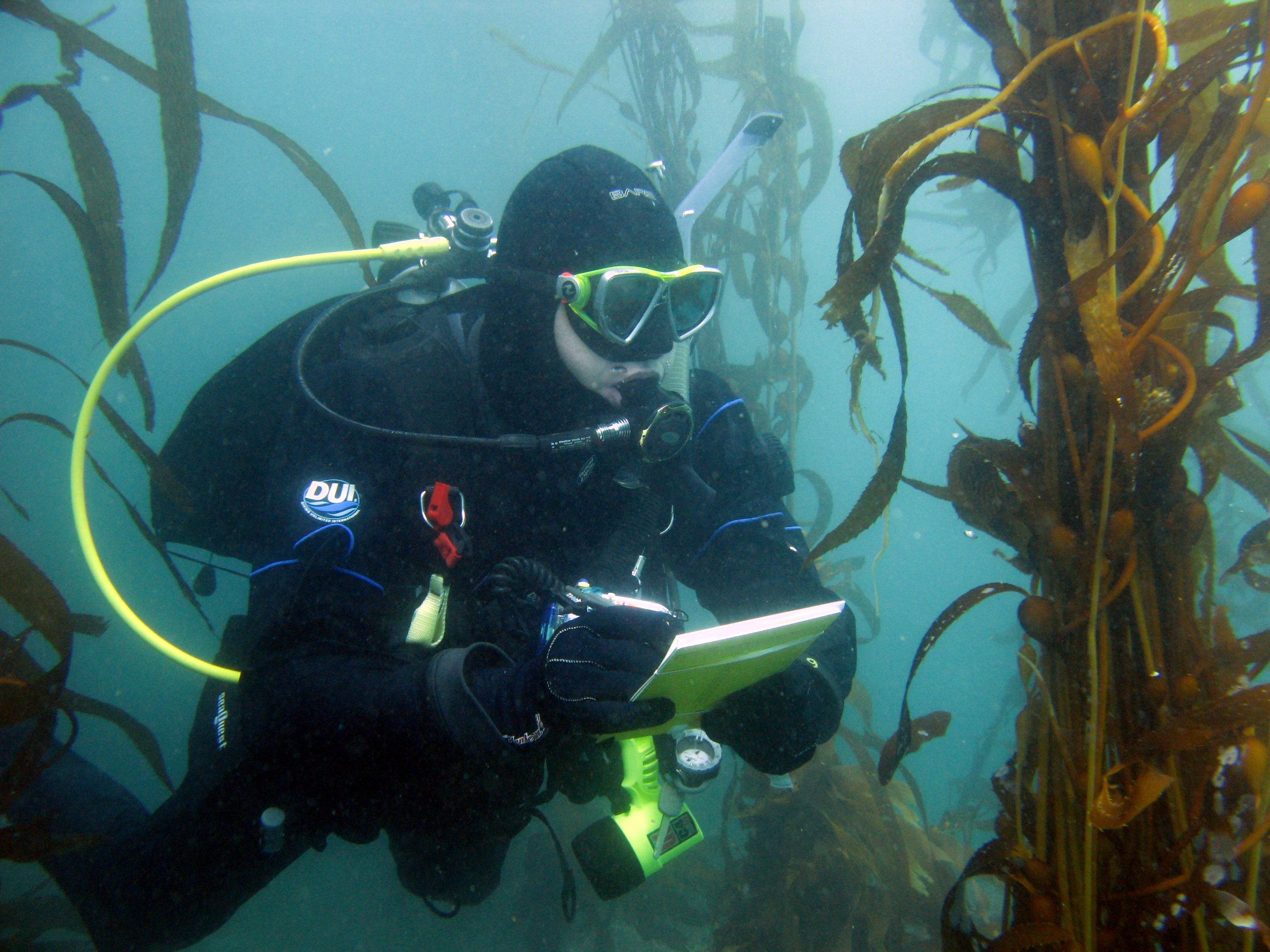 Marine   Environmental Assessments    Contact Us
