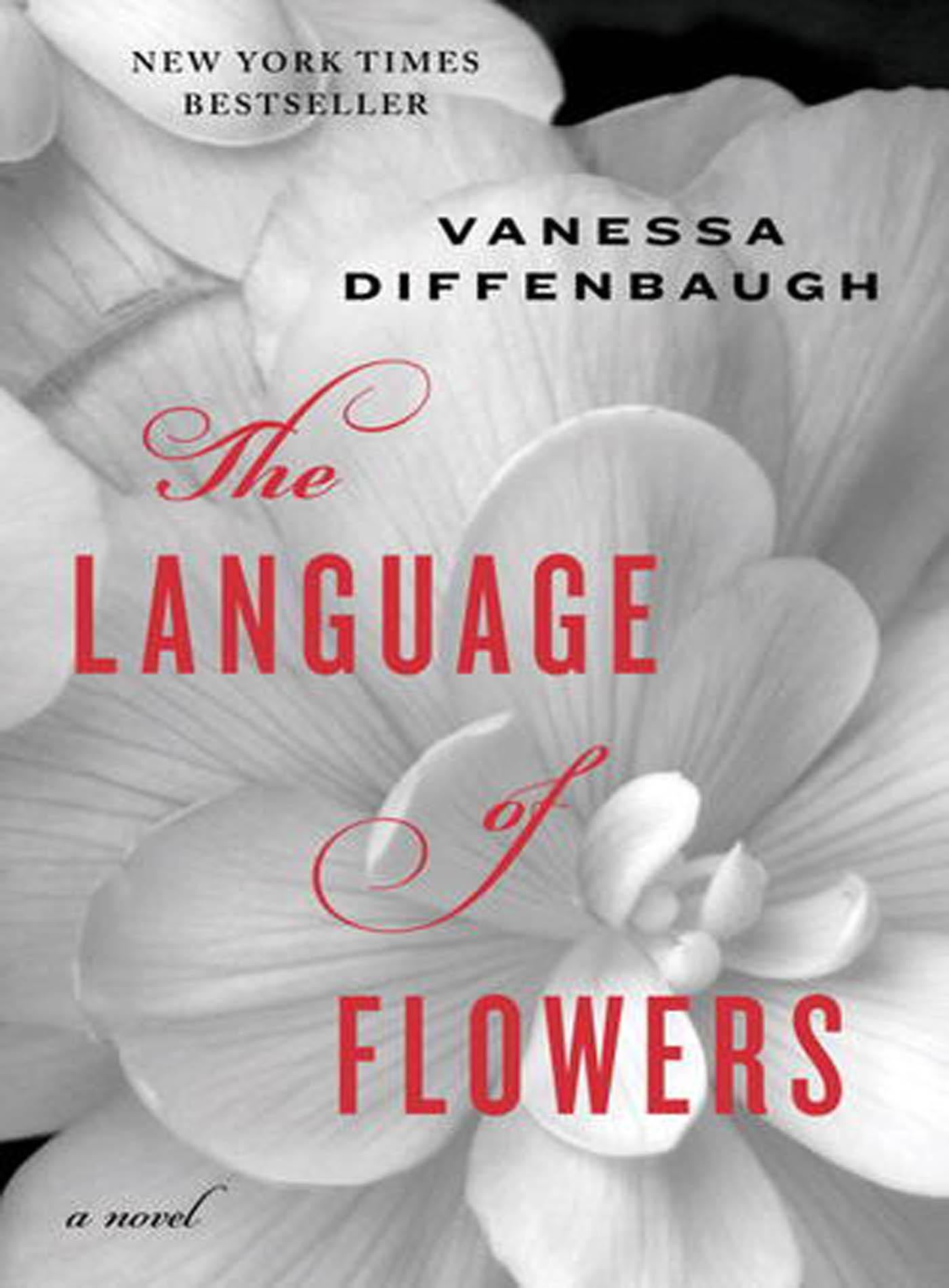 VanessaDiffenbaugh_Language.jpg
