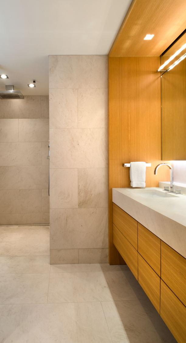 06_Master-Suite-Renovation-Shower.jpg