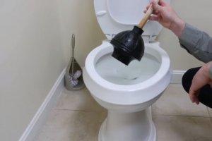 Pleasanton, California - Clogged Toilet