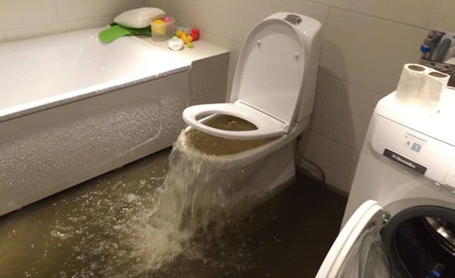 Dublin Clogged Toilet