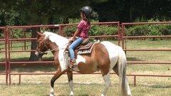 kid on horse.jpg