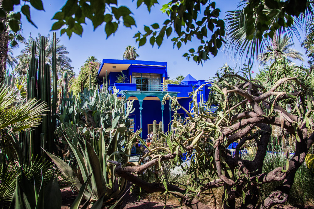 IMG_0536DONNA FORD Morocco.jpg