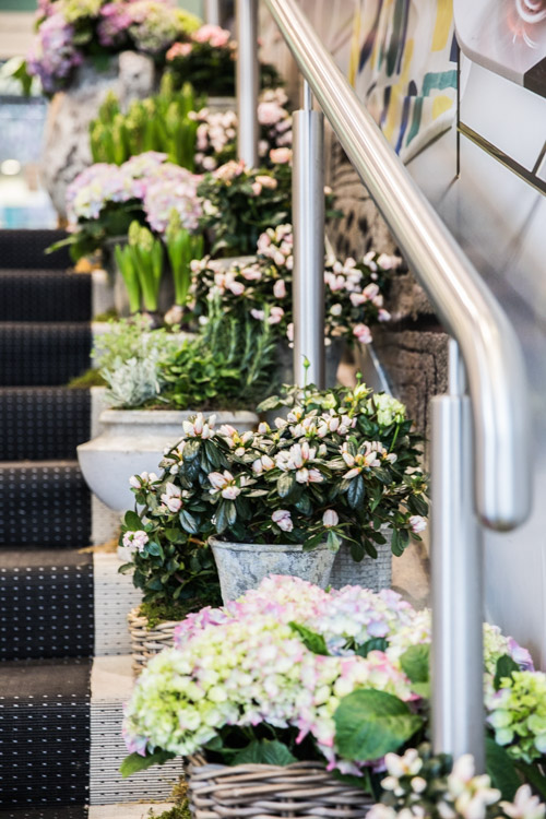 Fresh flowers adorning the entrance reminding us that Spring is just around the corner and that flowers instantly brighten up any interior!