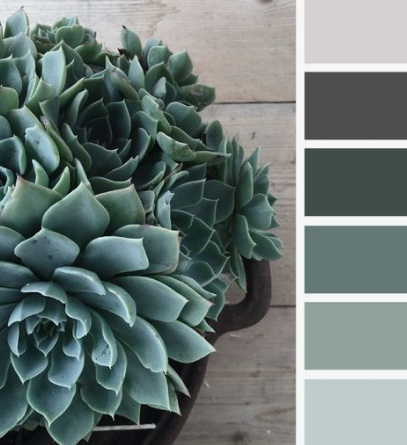 Image via  Design Seeds