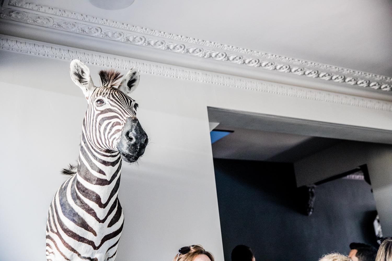 Livingetchousetours-DonnaFord2018 zebra on wall