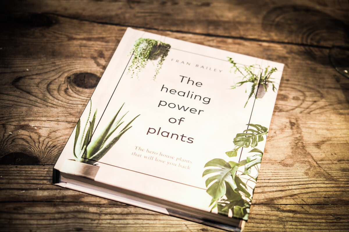The amazing book by Fran Bailey, the Founder of  Forest . Photo by  Suzanne Mitchell